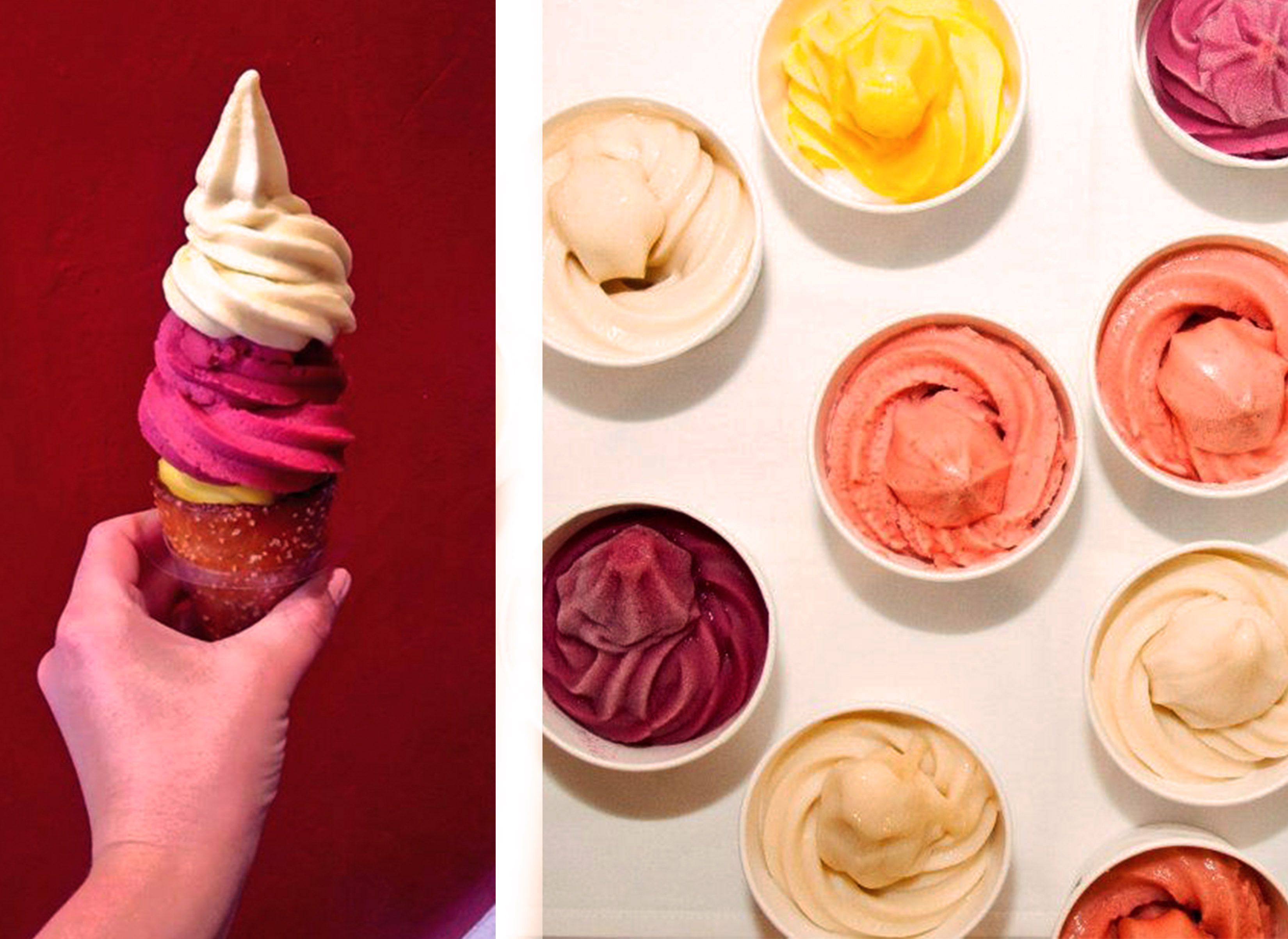 The Soft Serve Fruit Co.