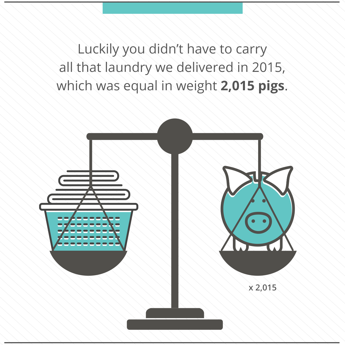 2015-year-end-review-laundry-pig (1)
